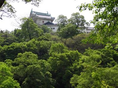 新緑の和歌山城