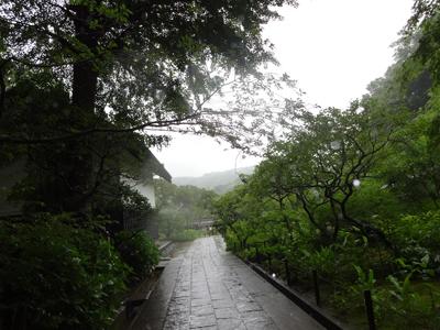 雨にけむっています