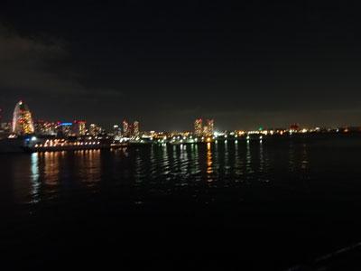 横浜の夜景 はじめてみたよ