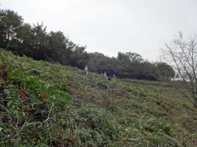 この斜面の草刈をしました