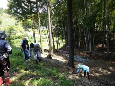 家人TとNは、それぞれタケノコ堀りに挑戦