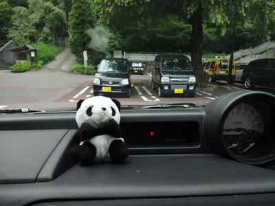 今日は小パンダを連れて行った